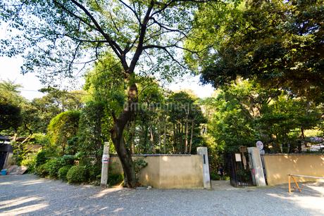 甘泉園公園(入口)の写真素材 [FYI01677007]