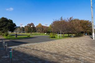 城北中央公園 多目的運動広場の写真素材 [FYI01677818]