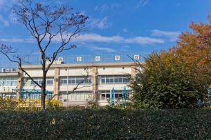 練馬区立春日小学校の写真素材 [FYI01678229]