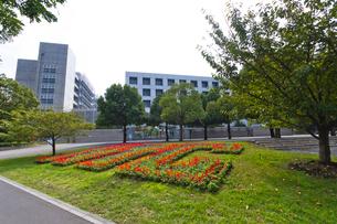 税務大学校和光校舎の写真素材 [FYI01678883]
