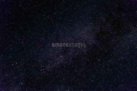 星野(はくちょう座デネブ、アルビレオ、ギェナー、天頂で左が北)の写真素材 [FYI01679339]