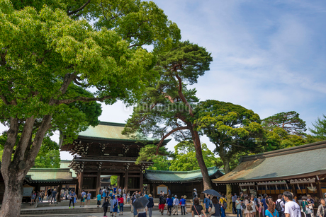 明治神宮・御社殿の入口の写真素材 [FYI01679477]