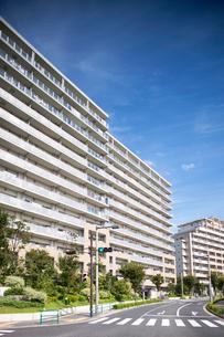 新興住宅街の高層マンションの写真素材 [FYI01679530]