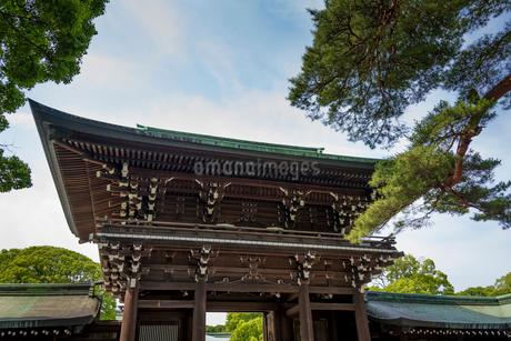 明治神宮・御社殿入口の屋根の写真素材 [FYI01679959]