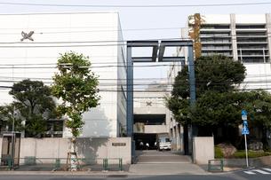 開成学園 開成中学校・開成高等学校の写真素材 [FYI01680195]