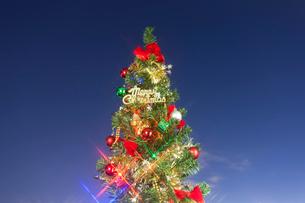クリスマスツリーの写真素材 [FYI01680524]