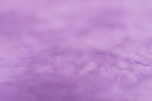 もみ染めの楮和紙の写真素材 [FYI01680630]