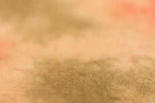 もみ染めの楮和紙の写真素材 [FYI01680793]