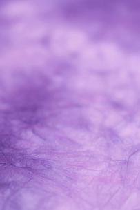 もみ染めの楮和紙の写真素材 [FYI01680880]