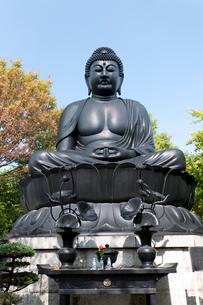 赤塚山慶学院乗蓮寺の写真素材 [FYI01680915]