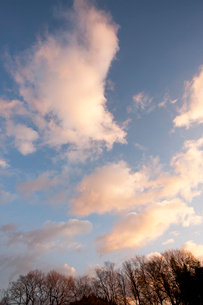 朝焼けの空の写真素材 [FYI01680921]