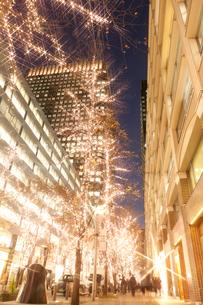 クリスマスの丸の内仲通りの写真素材 [FYI01681006]