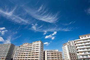 新興住宅街の高層マンションの写真素材 [FYI01681143]