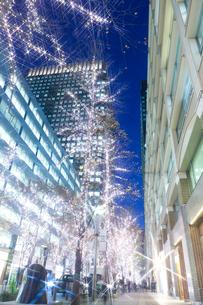 クリスマスの丸の内仲通りの写真素材 [FYI01681362]