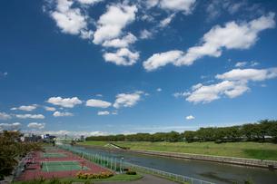 荒川赤羽桜堤緑地の写真素材 [FYI01681624]
