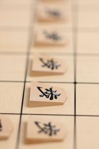 将棋盤の写真素材 [FYI01681823]
