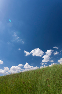 草原と夏空の写真素材 [FYI01681835]