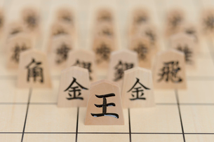 将棋駒の写真素材 [FYI01681837]