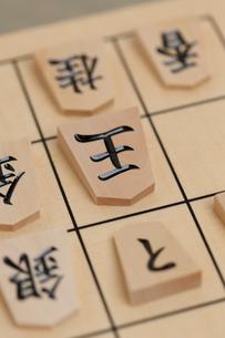 将棋 王手 の写真素材 [FYI01681865]