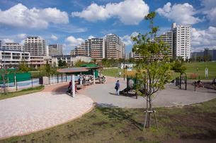 新田さくら公園の写真素材 [FYI01681922]