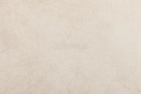 和紙の写真素材 [FYI01681923]