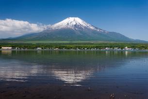 山中湖と富士山の写真素材 [FYI01682003]
