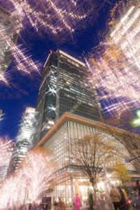クリスマスの丸の内ビルの写真素材 [FYI01682098]