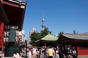 ほおずき市で賑わう浅草寺の写真素材 [FYI01682140]