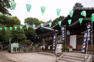 アジサイが咲く白山神社の写真素材 [FYI01682158]