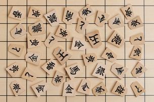 将棋駒の写真素材 [FYI01682332]