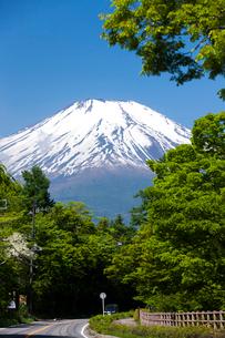 山中湖畔 マリモ通りから見た富士山の写真素材 [FYI01682410]