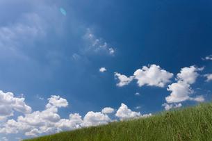 草原と夏空の写真素材 [FYI01682454]