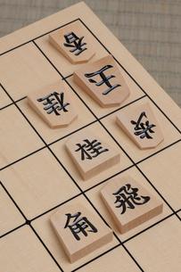 将棋の写真素材 [FYI01682487]