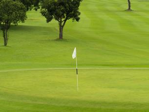 ゴルフコースの写真素材 [FYI01682561]