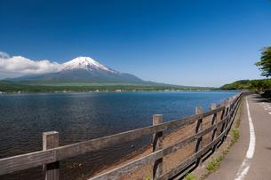 山中湖から見た富士山の写真素材 [FYI01682626]