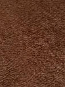 牛革の写真素材 [FYI01682653]