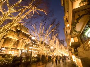 表参道のクリスマスイルミネーションの写真素材 [FYI01682659]