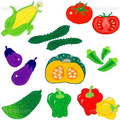 野菜/果菜類のイラスト素材 [FYI01682853]