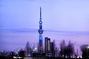 夕暮れのスカイツリーと汐入公園の写真素材 [FYI01682976]