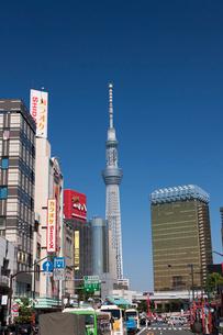 浅草雷門から見た東京スカイツリーの写真素材 [FYI01682981]