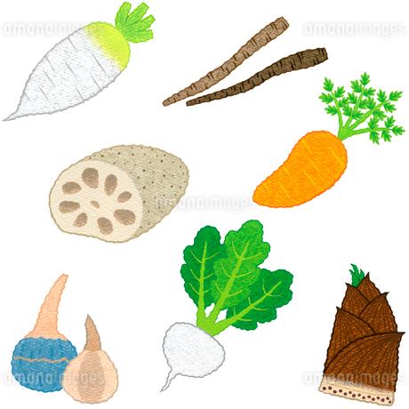 野菜/根菜類のイラスト素材 [FYI01683196]