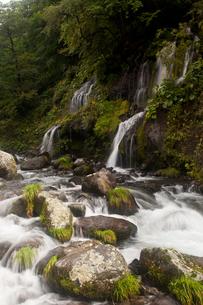吐竜の滝と流れの写真素材 [FYI01683274]