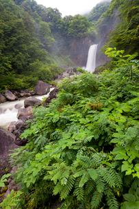 苗名滝の写真素材 [FYI01683310]