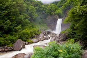 苗名滝の写真素材 [FYI01683404]