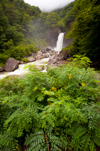 苗名滝の写真素材 [FYI01683584]