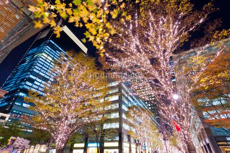 東京,丸の内の夜景の写真素材 [FYI01683596]