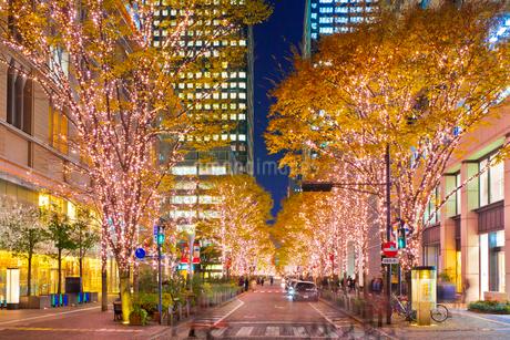 東京,丸の内の夜景の写真素材 [FYI01683606]
