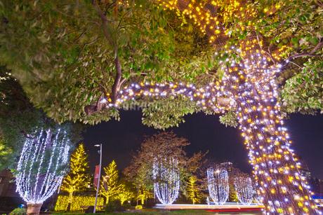 東京ミッドタウンの夜景の写真素材 [FYI01683686]