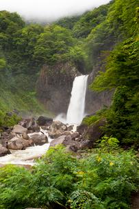 苗名滝の写真素材 [FYI01683714]