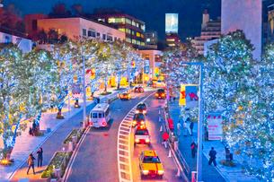 六本木けやき坂通りのイルミネーションの写真素材 [FYI01683957]